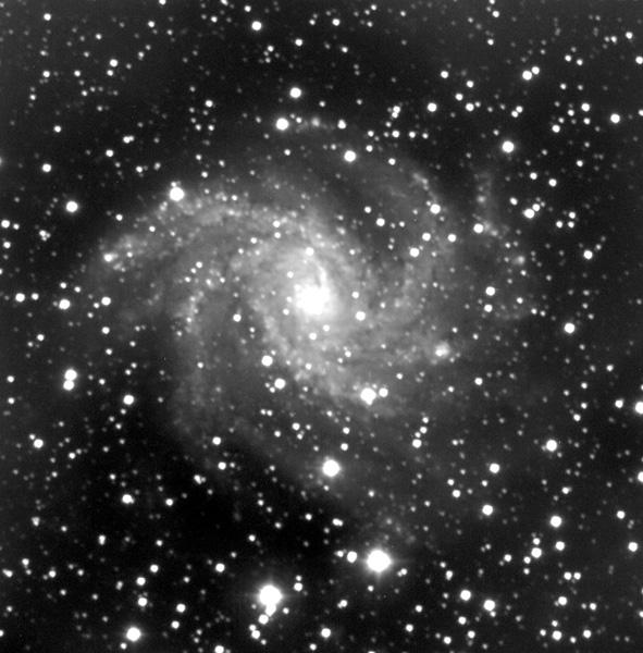 NGC 6946 Ripresa con il telescopio principale AUTORE: PAOLO CALCIDESE