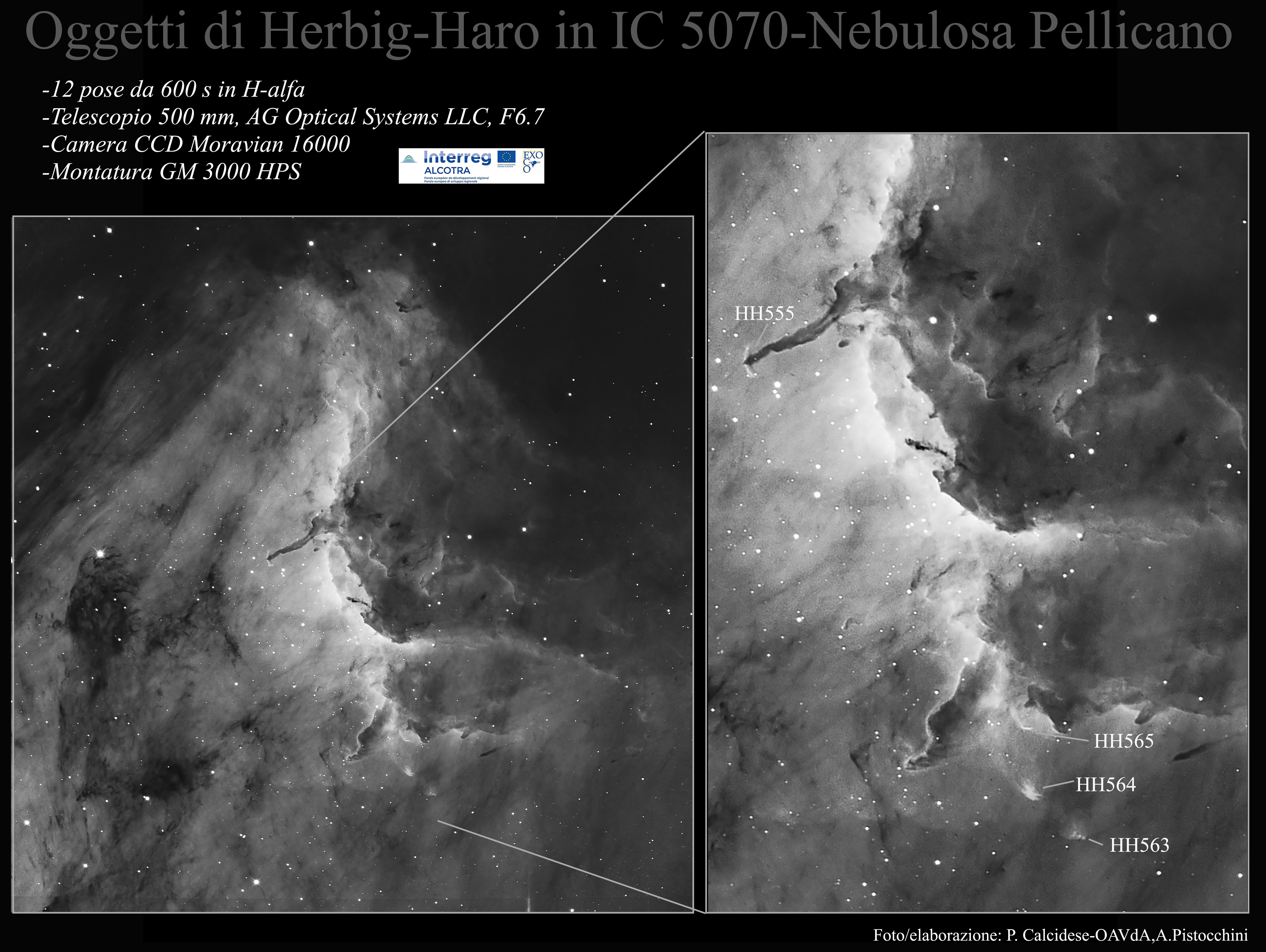 HH555-Nebulosa Pellicano