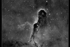 Nebulosa Proboscide Elefante
